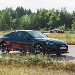 Audi_355